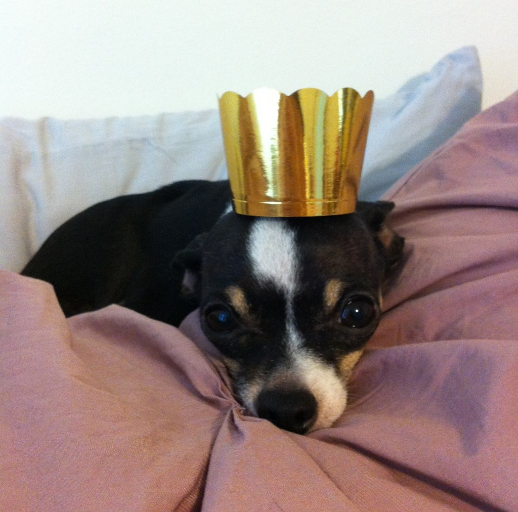 princesshat